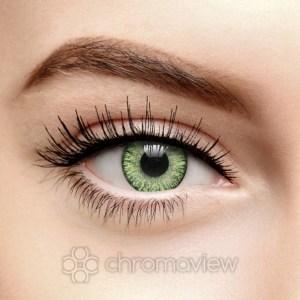 Green-Blends-30-days