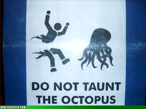 do not taunt the octopus