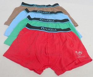 Underwear 1
