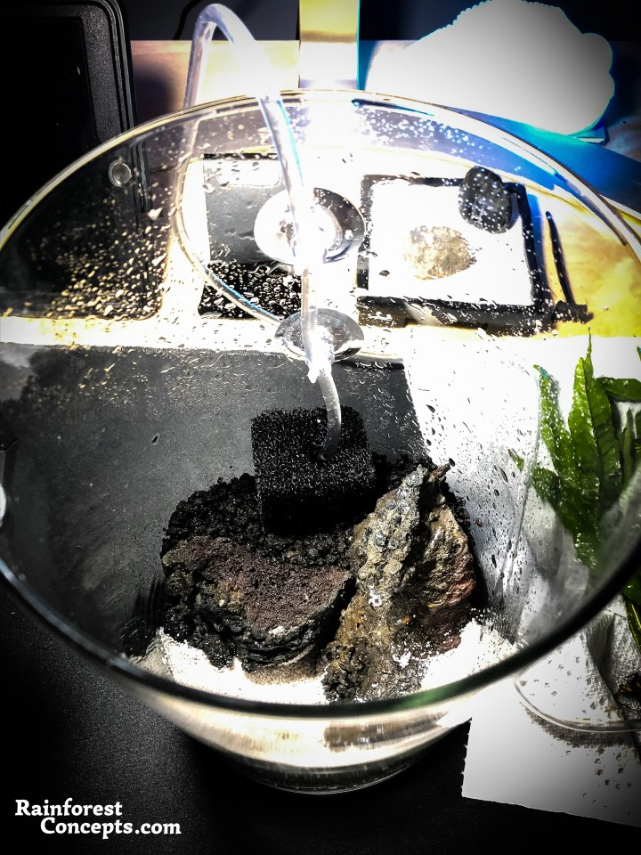 A small airstone with filter mesh is inserted at the bottom of the jarrarium