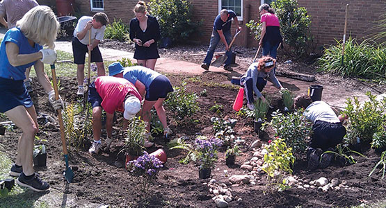 plant a rain garden if you ve ever done any gardening it ll be a snap it just requires a basic vision a little site preparation and putting the