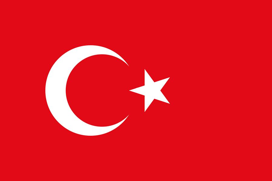 土耳其電子簽證 Turkey Electronic Visa Application (e-Visa) 線上申辦超簡單!!