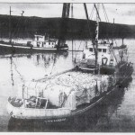 MV Chichagof, Power scow, 1962, Aliak Bay, load of salmon,