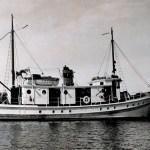 Pelican-04-NOAA