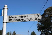 Macclesfield Forest walk