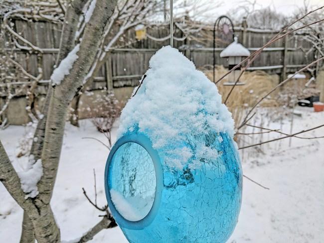 SnowOnFeeder