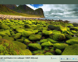 As for video formats, it supports mp4, webm, avi, m4v, mov and wmv. RainWallpaper - Live Wallpaper Engine for Windows