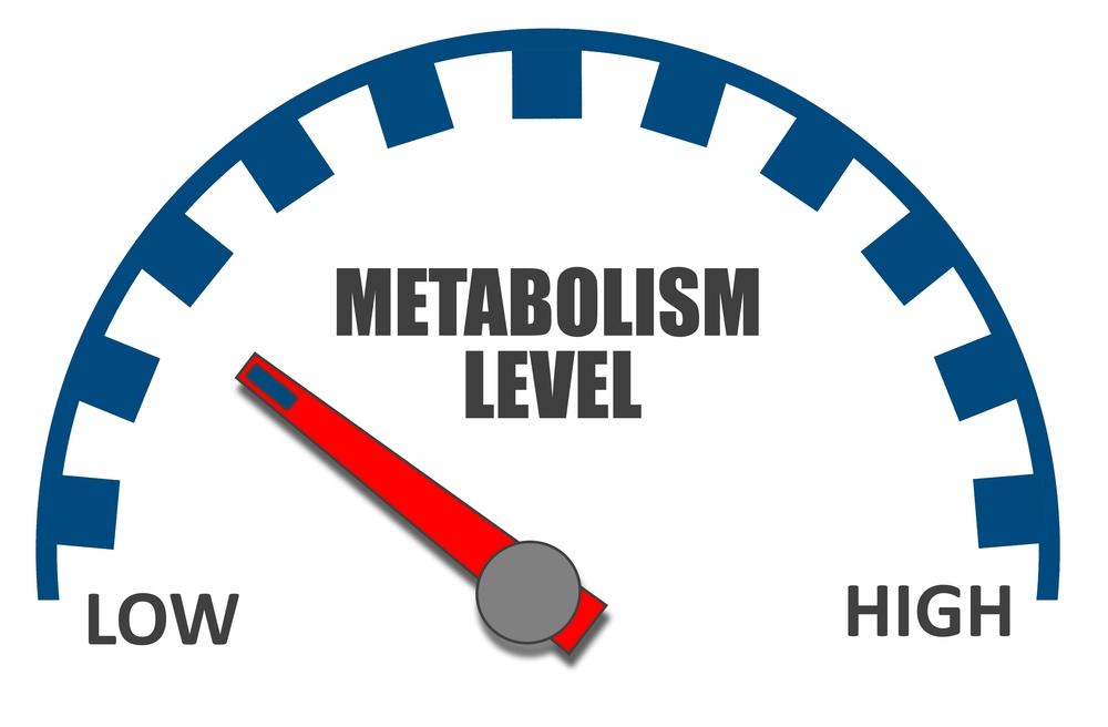 creșteți redarea rapidă a metabolismului