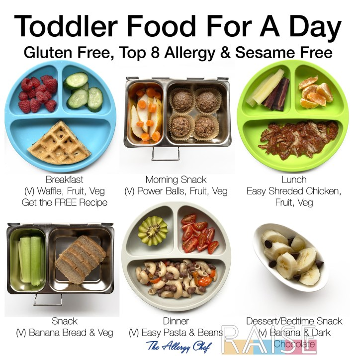 Toddler Food For a Day Top 8 Allergy Free by The Allergy Chef