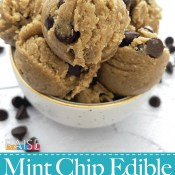 Gluten Free Vegan Mint Chocolate Chip Edible Cookie Dough