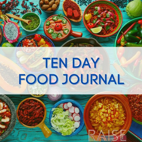 10 Day Food Journal by The Allergy Chef