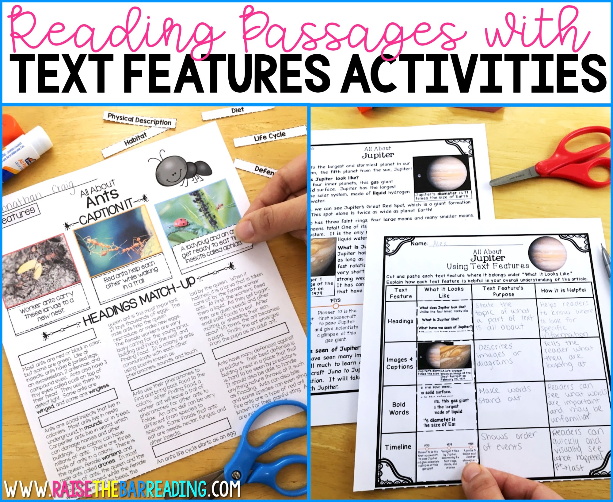hight resolution of 5 Ways to Practice Nonfiction Text Features - Raise the Bar Reading