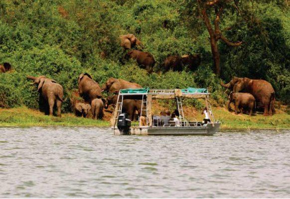 5-Day Gorilla Trekking Lake Mburo and Lake Bunyonyi