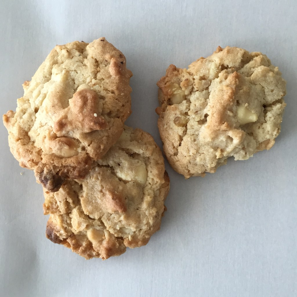 The Best Cookies You Ever Ate ->Raising5Girls