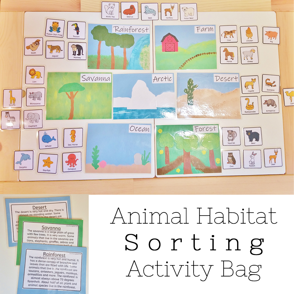 Animal Habitat Sorting Activity Bag