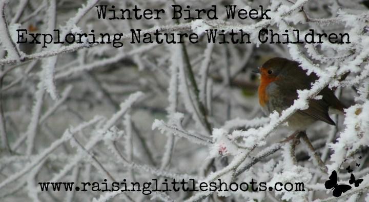 Winter Bird Week.jpg