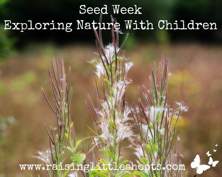Seed Week).jpg