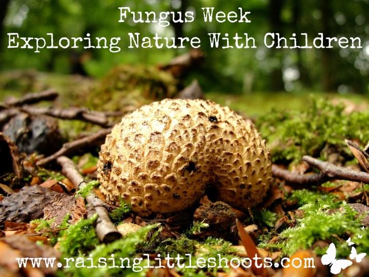 Fungus Week.jpg