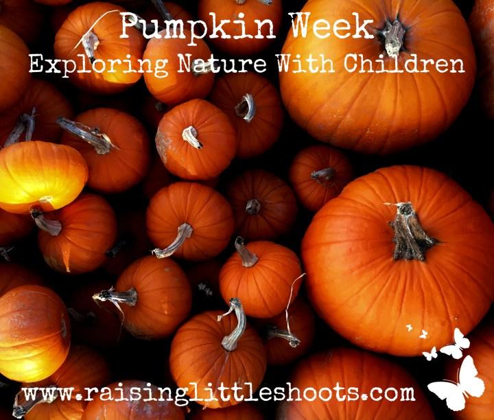 Pumpkin week meme