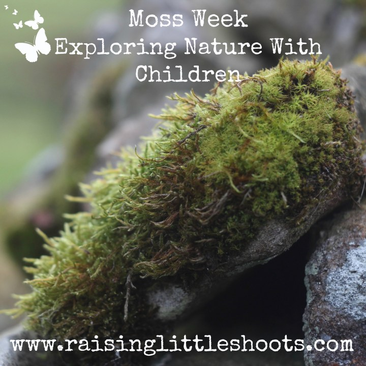 Moss Week.jpg