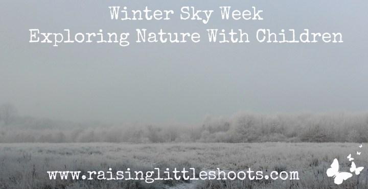 Winter Sky Week.jpg