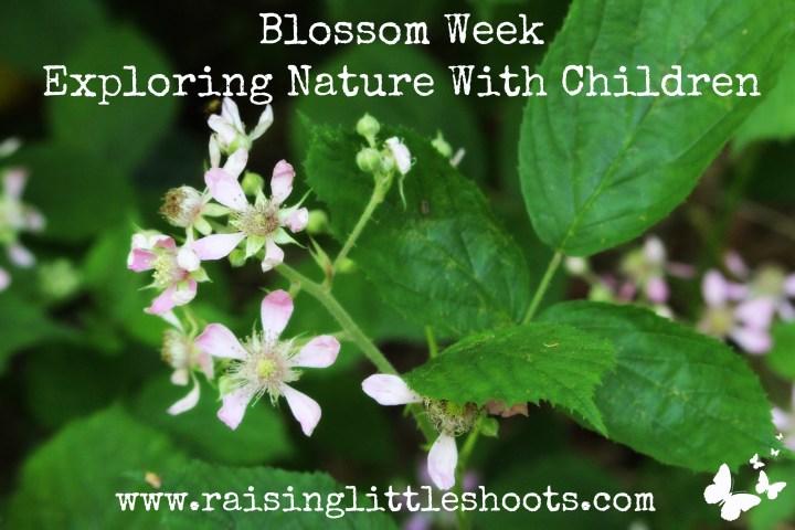 Blossom Week.jpg