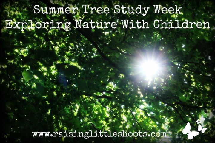 Summer Tree Study Week.jpg