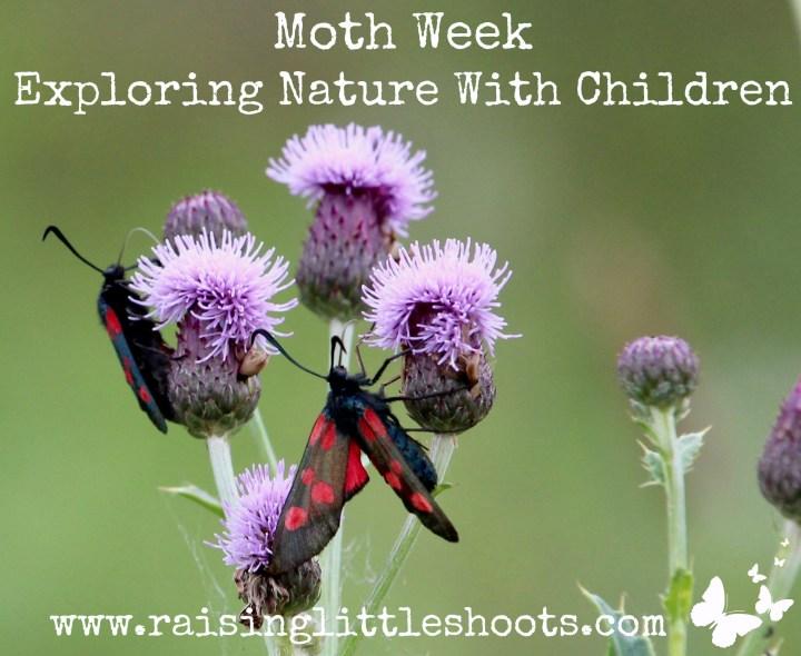 moth week.jpg