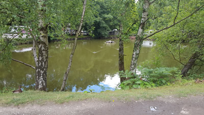 Camping with the kids - Holme Valley Camping and Caravan Park - Pond