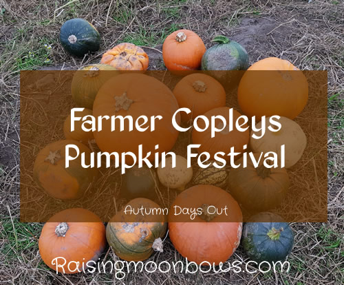 Farmer Copleys Pumpkin Festival - FI