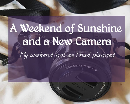 A weekend of Sunshine and anew camera - FI