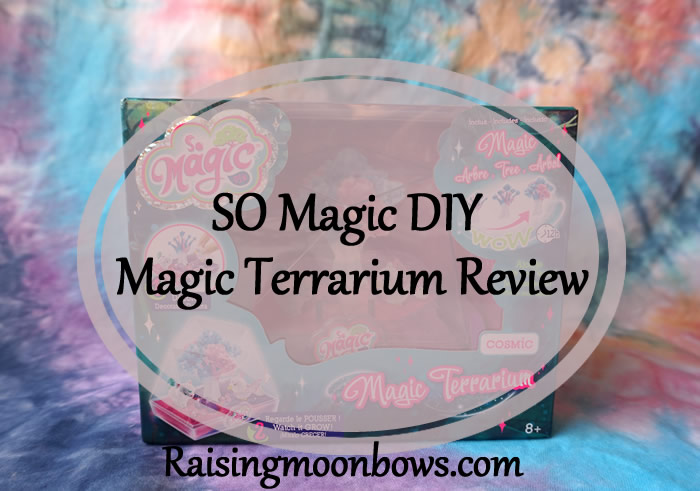 SO Magic DIY Terrarium Review - Feature Image