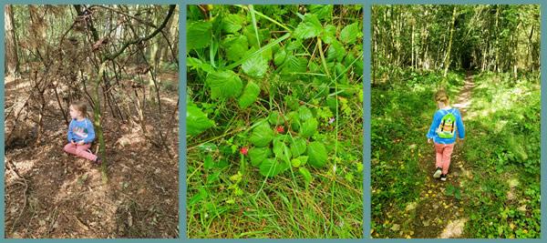 Dalby Pexton Moor Trail