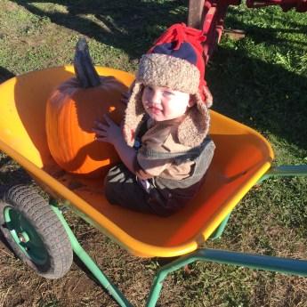 My Sweetie Pumpkin