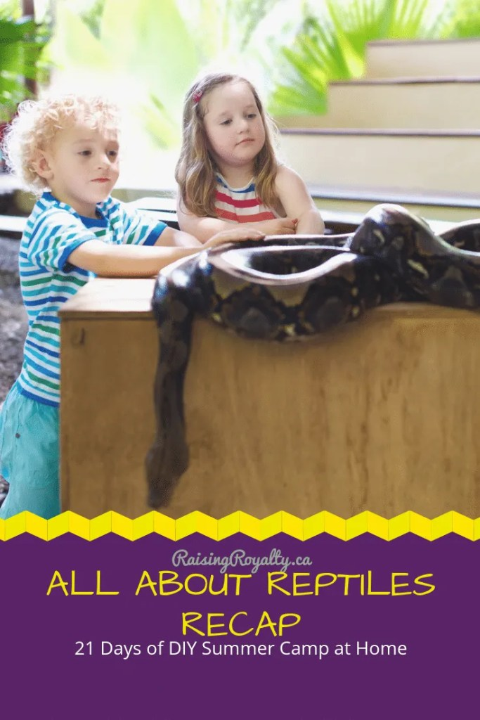 Week 2 of 21 Days of DIY Summer Camp is over, and it was all about reptiles! Check out our week's activities and join the fun!
