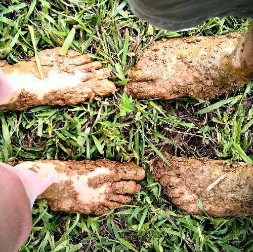 MuddyFeet