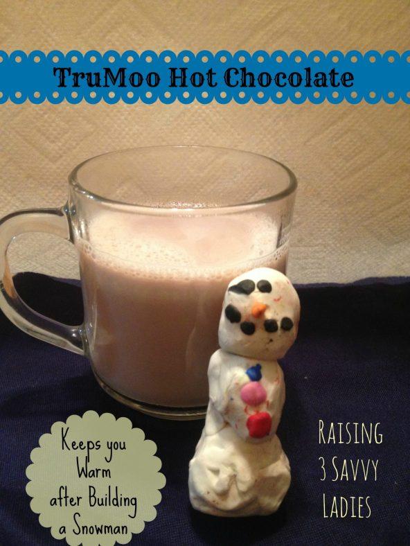TruMoo Hot Chocolate