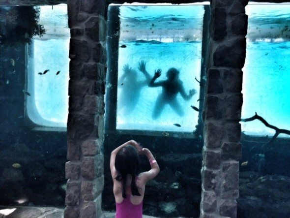Minerals Resort and Spa Indoor Pool