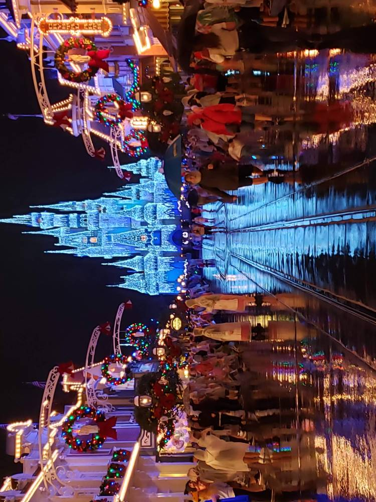 Street and Cinderella's castle lit up for the holidays.