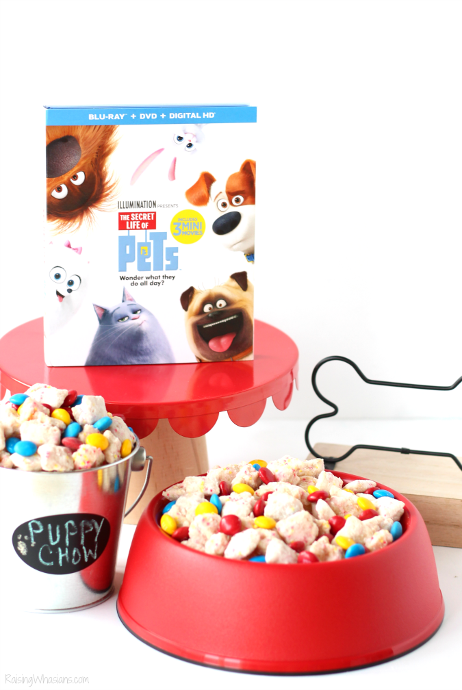 The Secret Life of Pets Puppy Chow & Family Movie Night Ideas   Make an easy The Secret Life of Pets inspired snack + ideas for a pet inspired movie party #PartyPlanning #Recipe