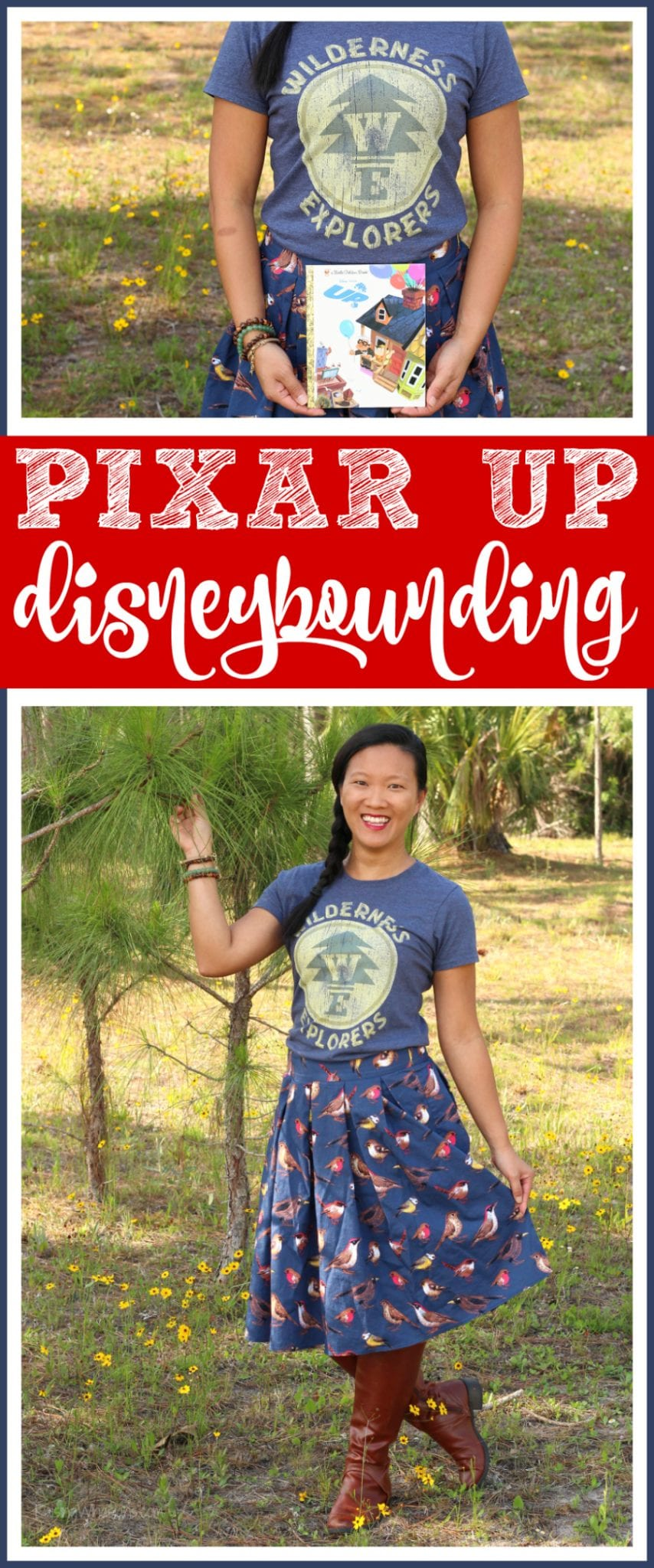 Disney Pixar up disneybounding