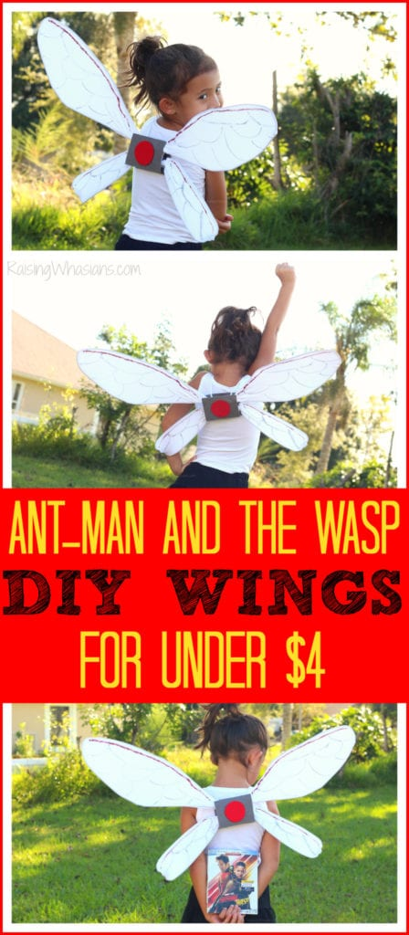Ant-man and the wasp party ideas