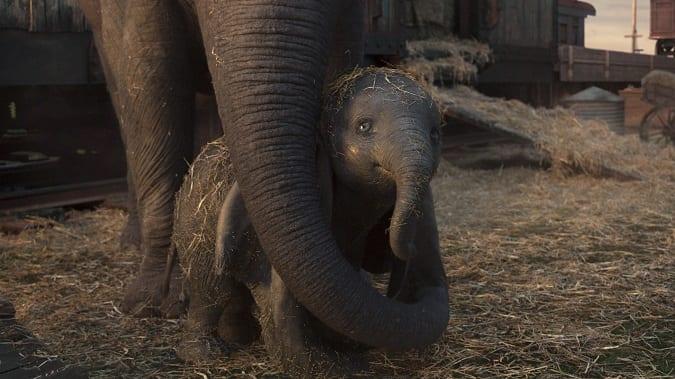 Is Dumbo safe for kids