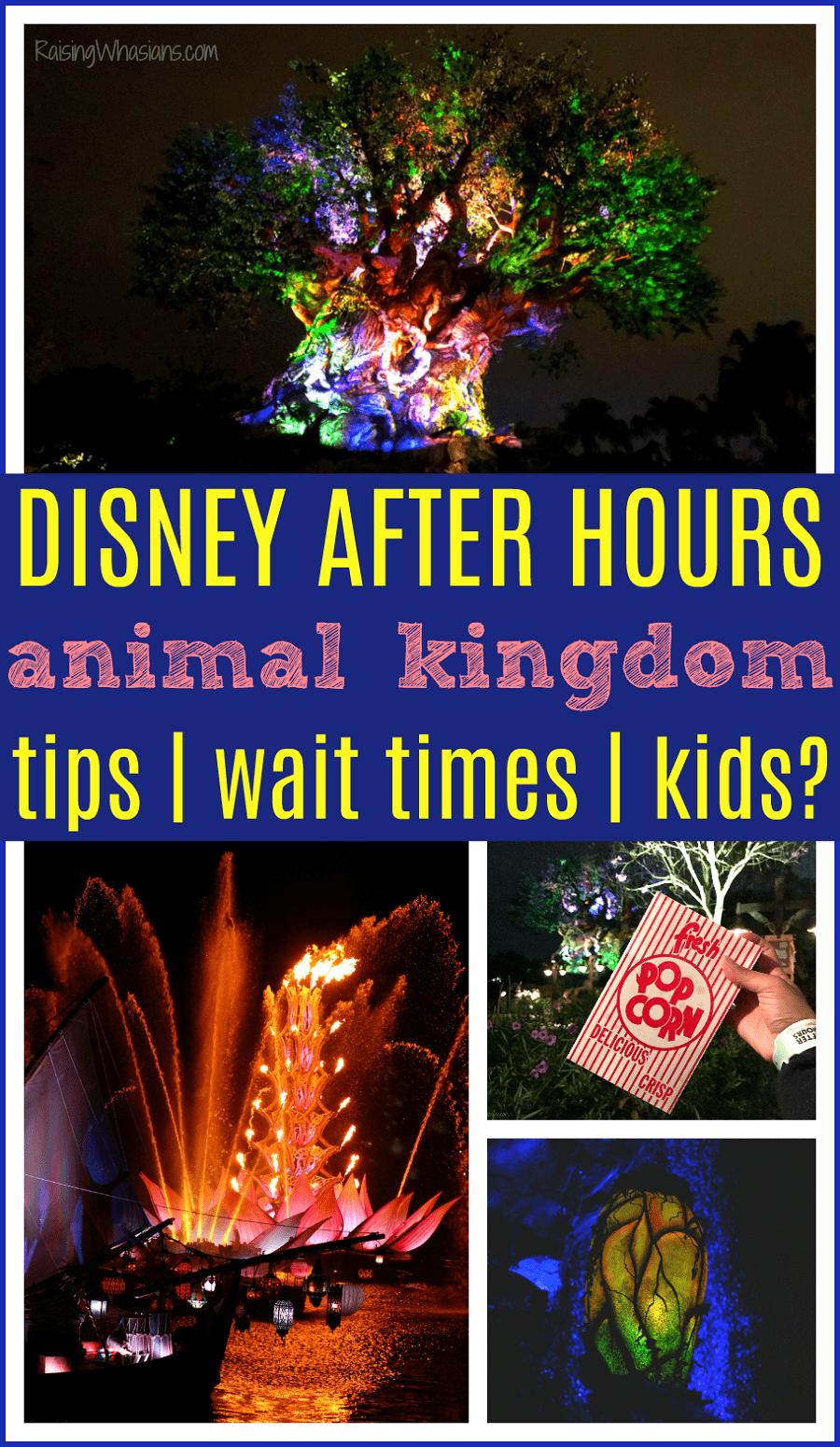 Disney after hours best tips