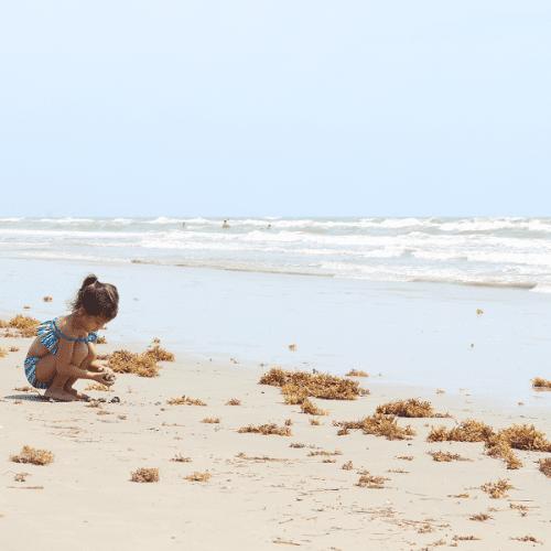 2019 Florida 529 savings plan promo