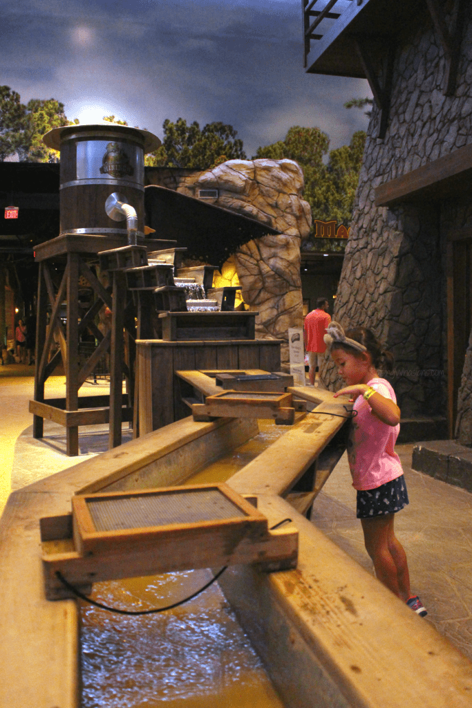 Great wolf lodge family activities