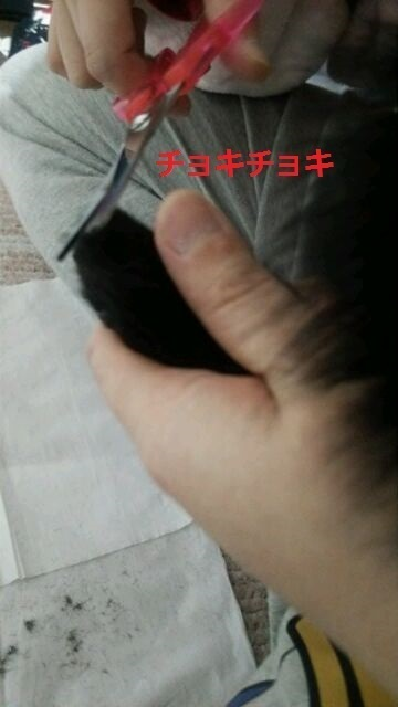 ちょきちょき.jpg