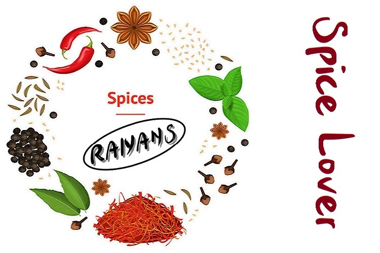 Realistic 3d Detailed Classic Spices Banner Card Circle. Vector
