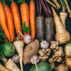 Legumes e Raízes