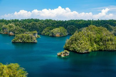 All about Raja Ampat and diving in a paradise ...